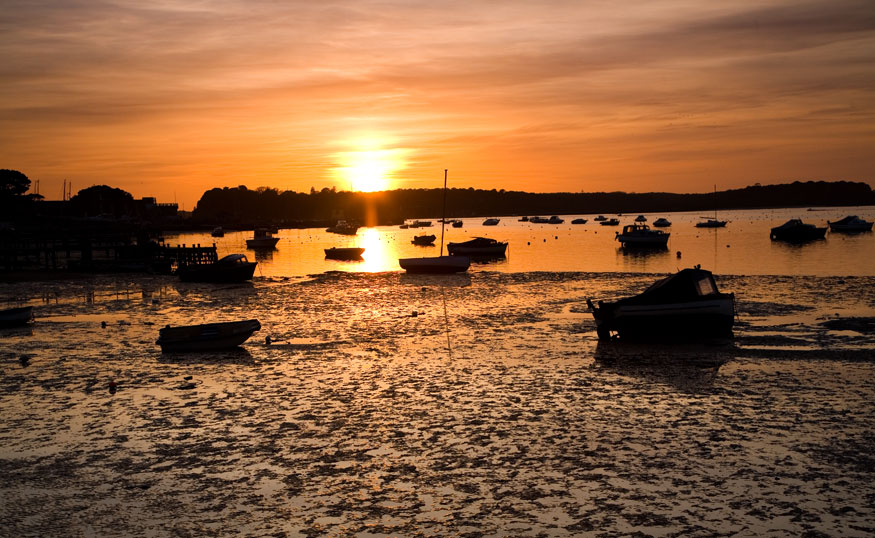 east dorset singles over 50 Hampshire district retains the top spot in the 50 best places to live in the uk  west oxfordshire, 37 east dorset, south west, 38 north dorset, south west, 39 harborough, east midlands 40.