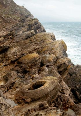 Lulworth fossil forest - Dorset