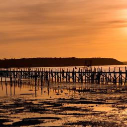 Poole Harbour Jetty Sunset