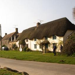 Spring Street Thatched Cottages - Wool