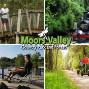 Moors Valley Country Park
