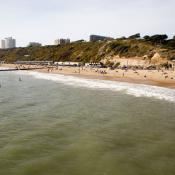 Surf's Up at Boscombe