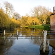 Abbey Street Pond - Cerne Abbas