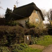 Thatched Cottage - Gillingham