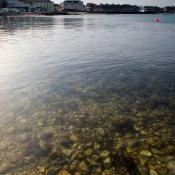 Swanage Bay - Clear Water