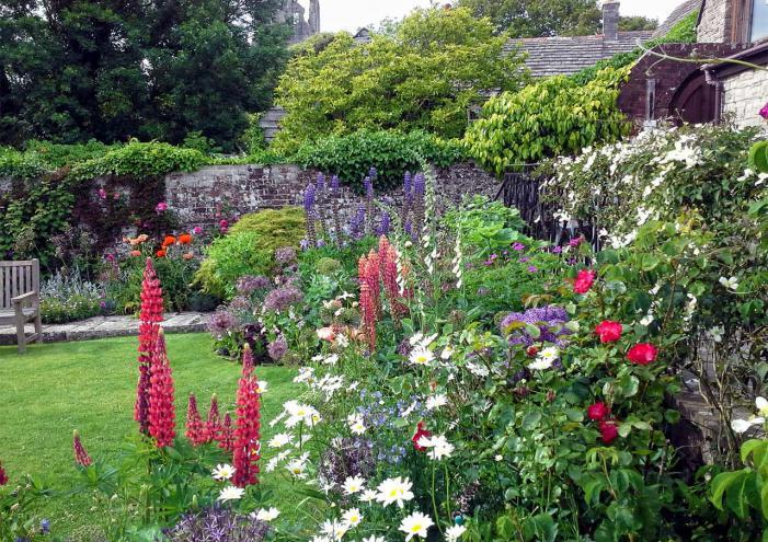 Corfe Castle Gardens