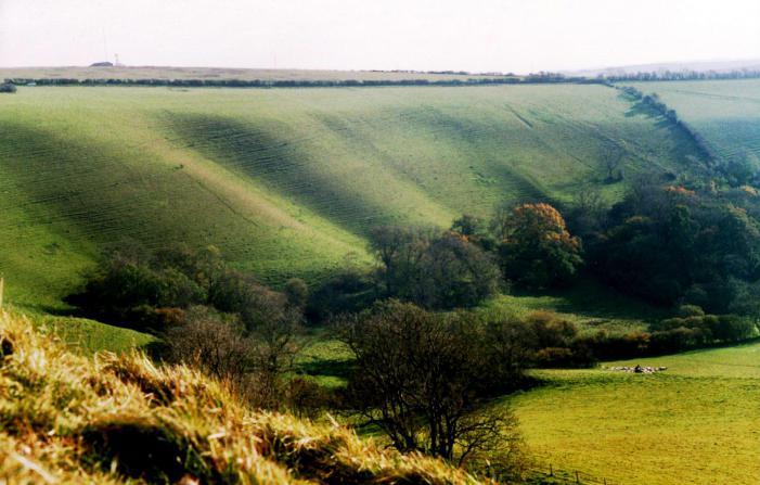 Eggardon Hill Fort