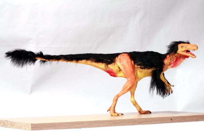 Wareham Museum dinosaur exhibition
