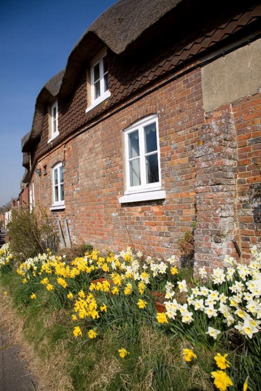 Bere Regis Thatched Cottage
