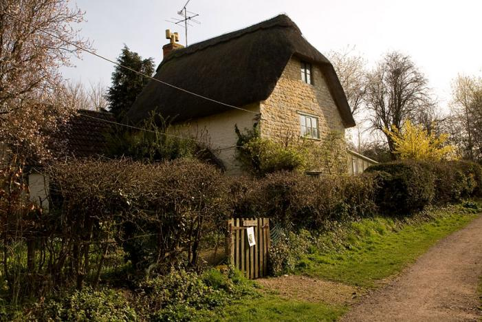 Thatched Cottage - Gillingham