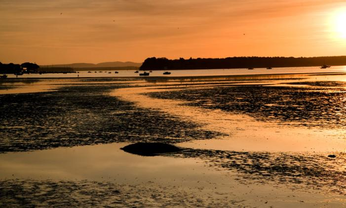 Poole Harbour Sunset