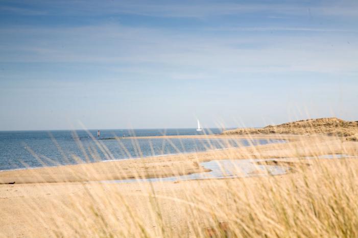 Shell Bay - Studland