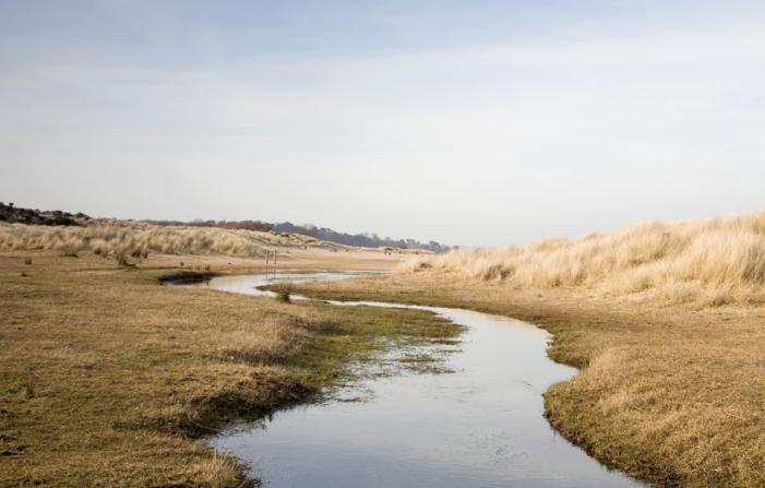 Studland Stream