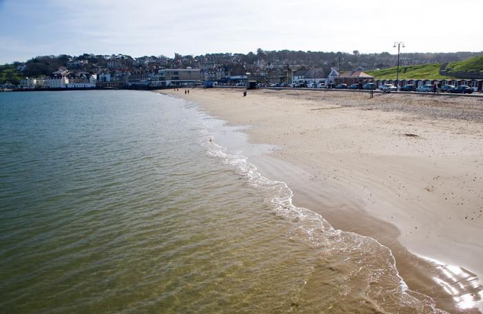 Dog Friendly Beaches Near Swanage
