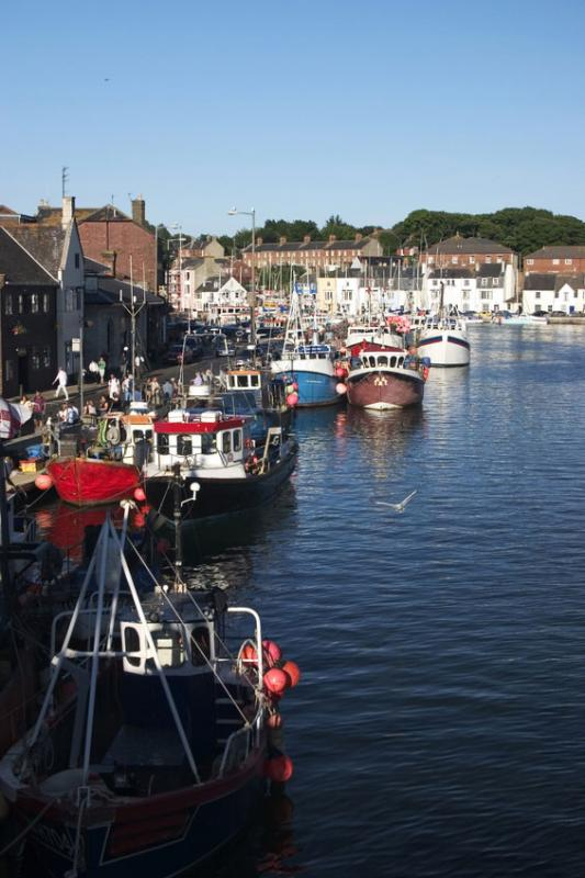 Weymouth Fishing Boats